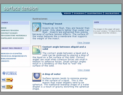 Screenshot of the Surface Tension Module